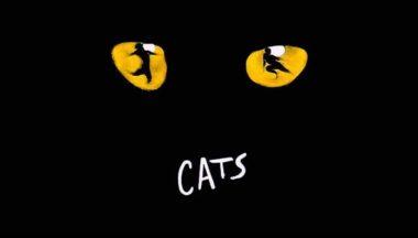 Cats Il Musical A Milano