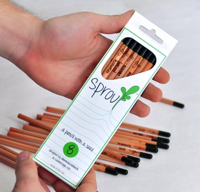 sprout matita