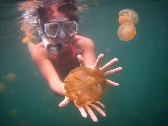 Lago delle Meduse