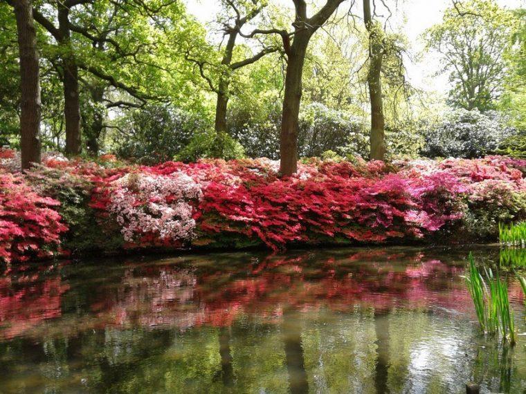 Richmond Park & Hide Park
