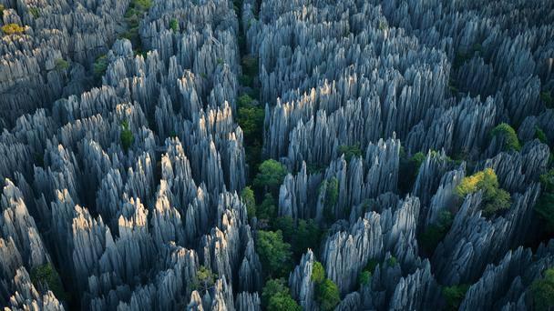 Riserva Tsingy