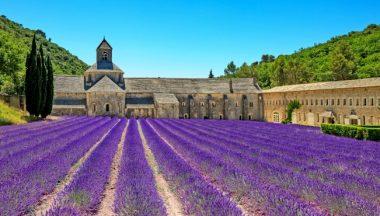Viaggio in Provenza per vedere la lavanda in fiore: i borghi più belli