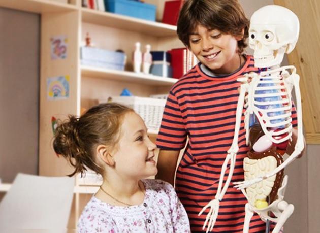 il corpo umano per bambini